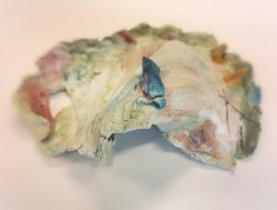 Ceramic coral by Rosalila Gibbons Year 4