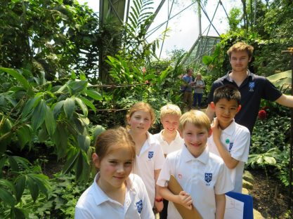 Image of Year 4 Rainforest Rangers!